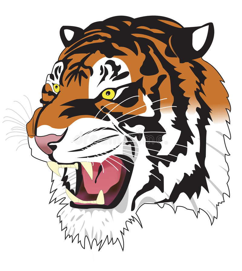 Free Tiger Royalty Free Stock Photos - 4677148