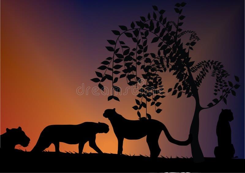 Download Tiger stock vector. Illustration of hunter, jaguar, silhouette - 5139963