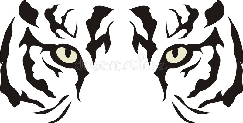 Tiger. An artistic illustration of a tiger with glaring eyes