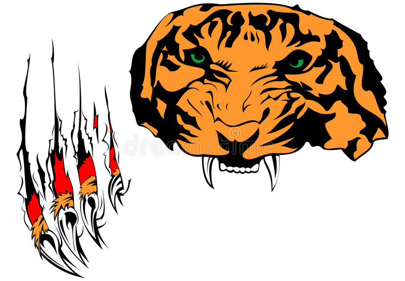 Download Tiger stock vector. Image of furious, animals, claws, vector - 8786325