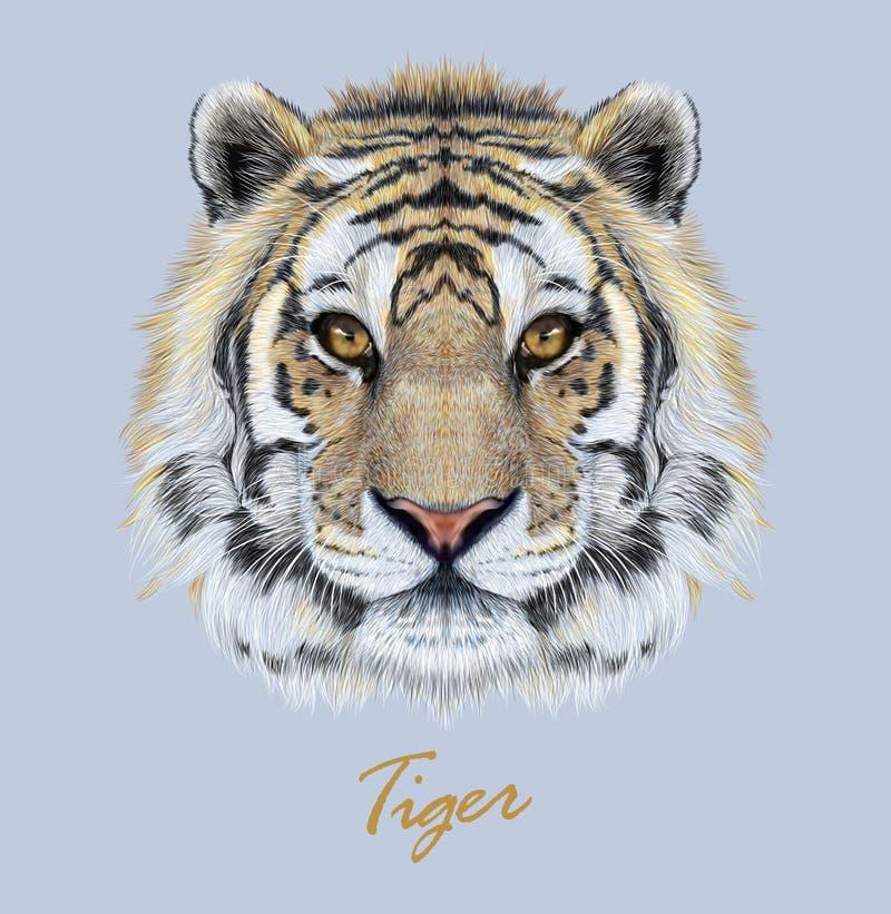 Free Tiger Animal Face. Vector Bengal Head Portrait. Realistic Fur Beast Of Tiger. Predator Eyes Of Wildcat. Big Cat Head On Blue Stock Image - 142305961