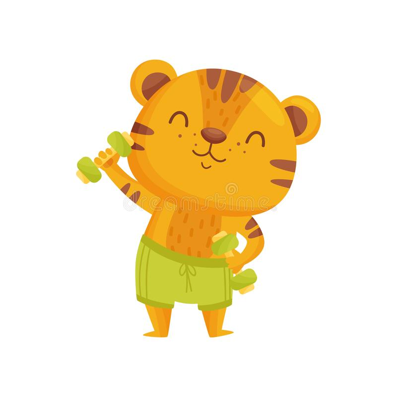 Tiger athlete on white background. Vector illustration. Tiger athlete on white background. Healthy lifestyle. Striped cartoon tiger. Childhood and fun. Vector royalty free illustration