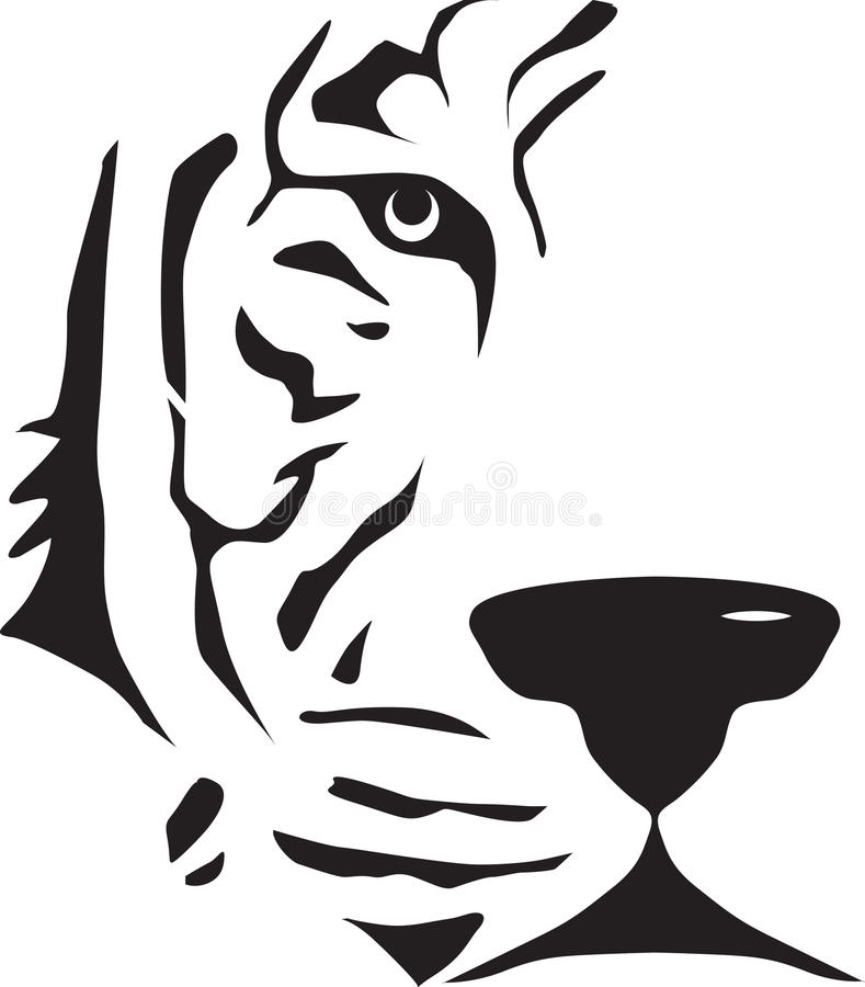 Tiger face stock images
