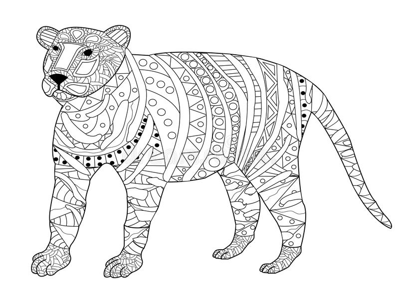 tiger coloring vector for adults stock vector illustration of