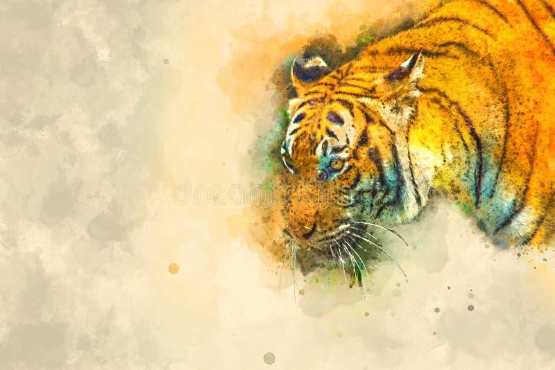 Tiger, digitale Illustration basiert auf ursprünglichem Foto lizenzfreie stockfotografie