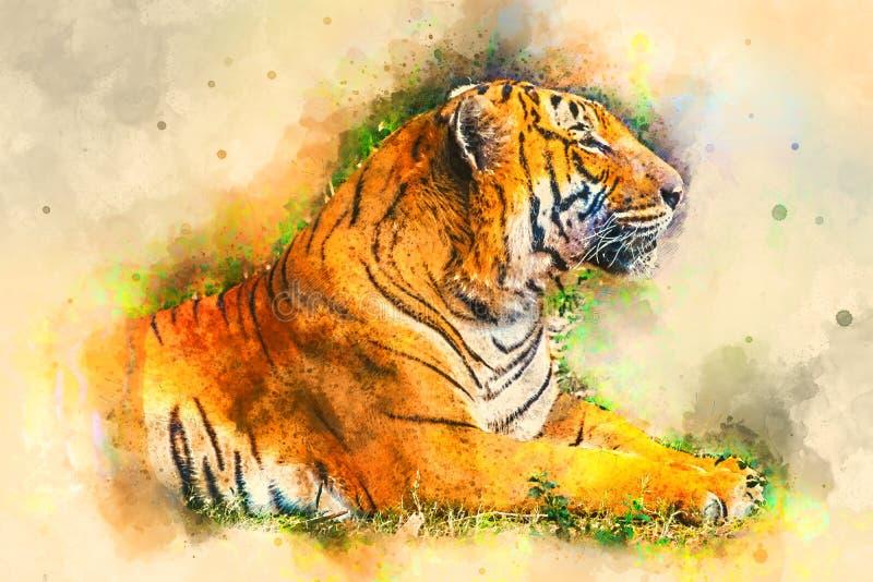 Tiger, digitale Illustration basiert auf ursprünglichem Foto stockfoto