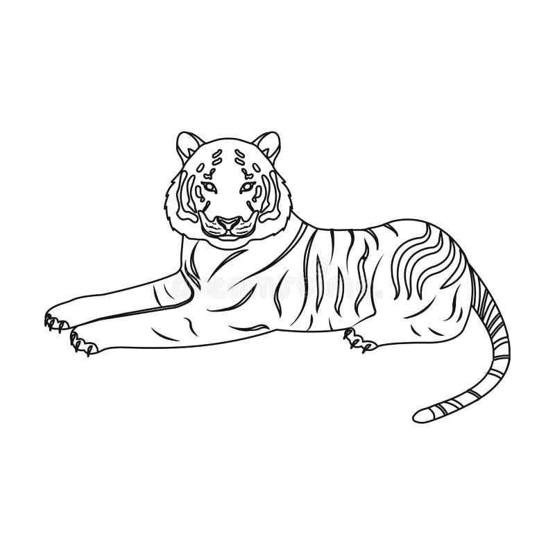 Tiger ett rov- djur Den belgiska tigern, en enkel symbol för stor lös katt i materiel för symbol för översiktsstilvektor vektor illustrationer