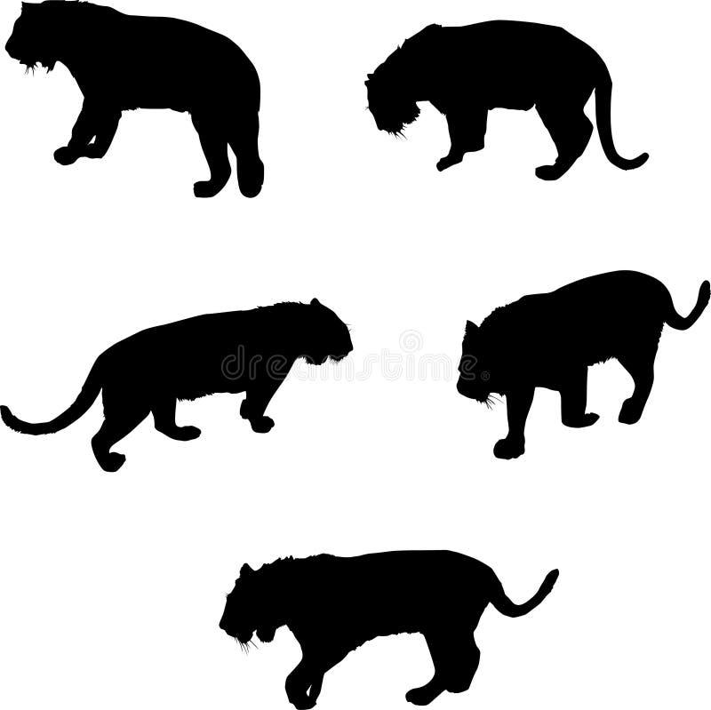 tiger för fem silhouettes stock illustrationer