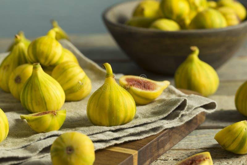 Tiger Figs orgánico amarillo crudo imagenes de archivo