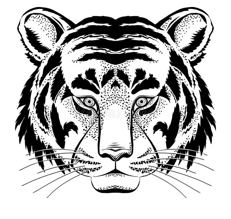 Tiger Head Royalty Free Stock Image