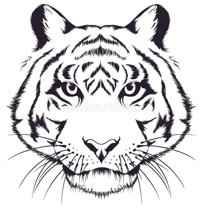Tiger Head ilustração royalty free