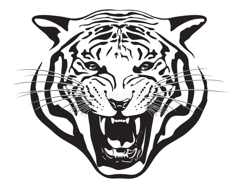 Tiger Head. Illustration. royalty free stock photos