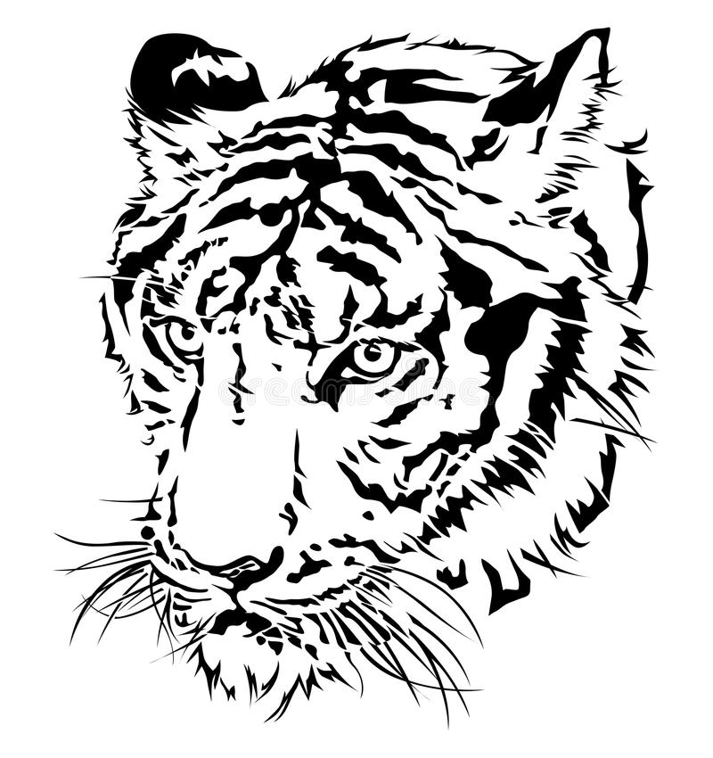 Tiger Head Silhouette Stock Vector Illustration Of