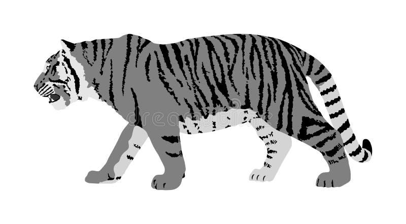 Tiger Illustration lokalisiert auf wei?em Hintergrund Gro?e wilde Katze Sibirischer Tiger Amur-Tiger - der Pantheratigris-altaica lizenzfreie abbildung