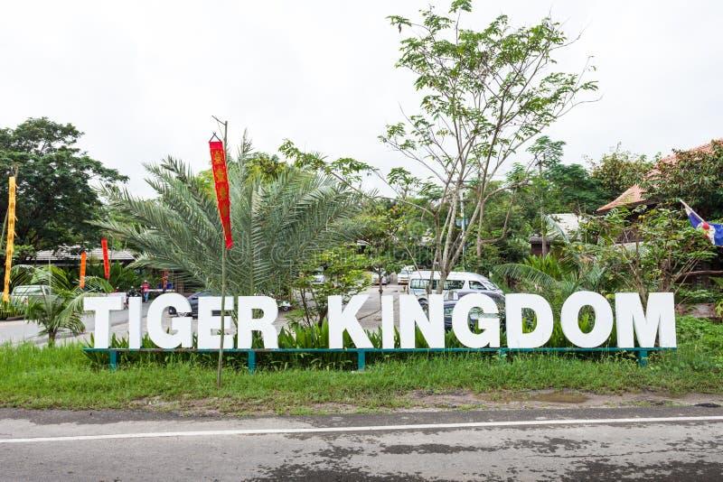 Tiger Kingdom immagine stock libera da diritti