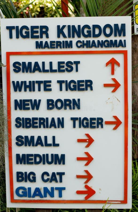 Tiger Kingdom is zeer populaire toeristische attracties, waar u met tijgers, Thailand kunt spelen stock fotografie