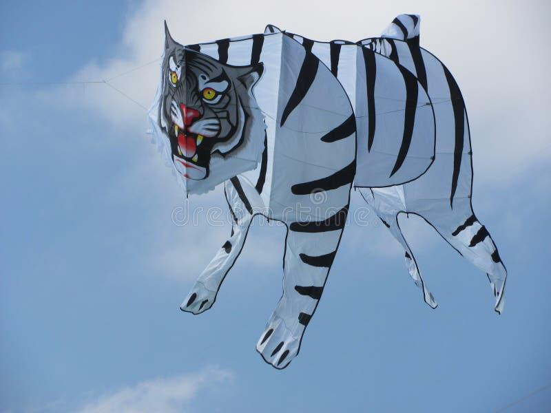 Tiger_Kite obraz stock