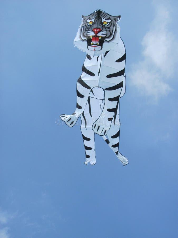 Tiger_Kite_1 zdjęcia stock