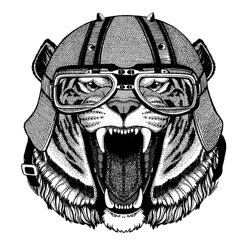 Tiger lös katt som bär en motorcykel, aero hjälm Utdragen bild för hand för tatueringen, t-skjorta, emblem, emblem, logo, lapp stock illustrationer
