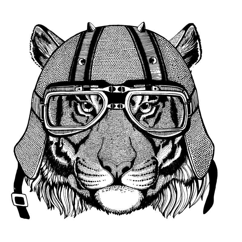 Tiger lös katt som bär en motorcykel, aero hjälm Utdragen bild för hand för tatueringen, t-skjorta, emblem, emblem, logo, lapp vektor illustrationer