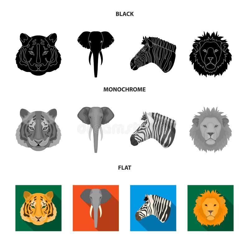 Tiger, Löwe, Elefant, Zebra, realistische Tiere stellte Sammlungsikonen im schwarzen, flachen, einfarbigen Artvektorsymbol ein stock abbildung