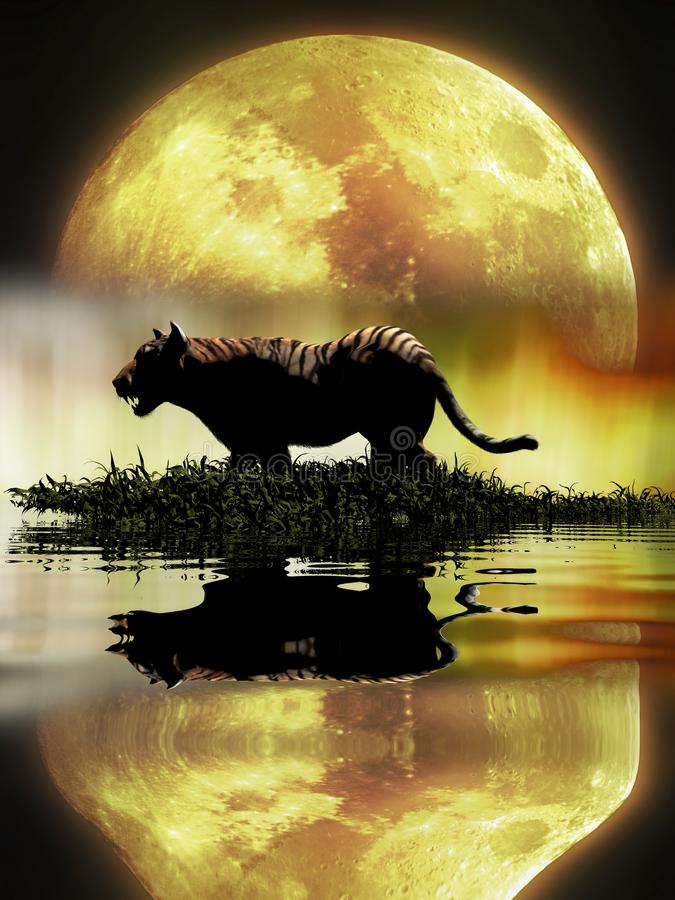 Tiger in the lagoon under the Moon. Tiger walking by the lagoon at night, under the full Moon, reflected in the water royalty free illustration
