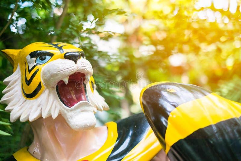Tiger Mask-model in de Tuin stock foto's