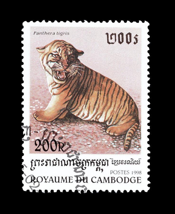Tiger på portostämpel royaltyfria bilder