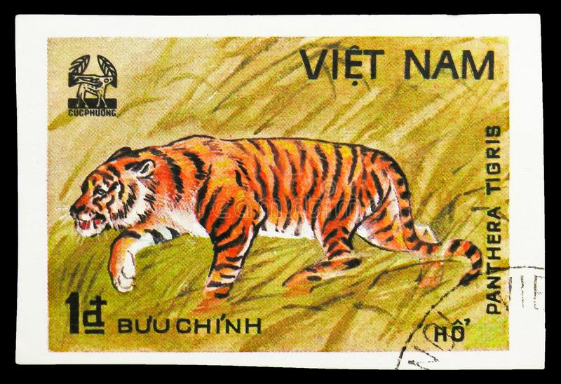 Tiger (Panthera tigris), Animals from Cuc Phuona Nati Forest serie, circa 1981. MOSCOW, RUSSIA - SEPTEMBER 26, 2018: A stamp printed in Vietnam shows Tiger ( stock photos