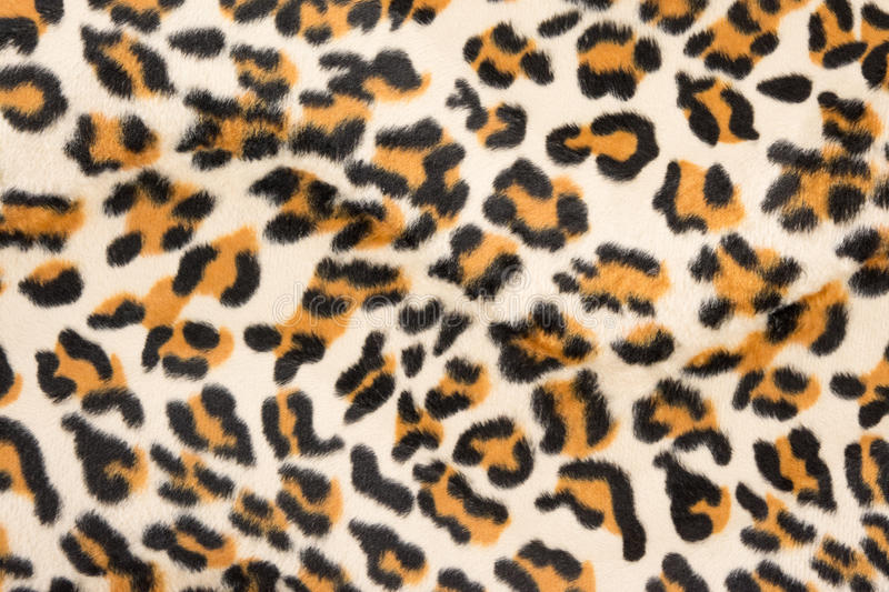 Tiger pattern stock photography