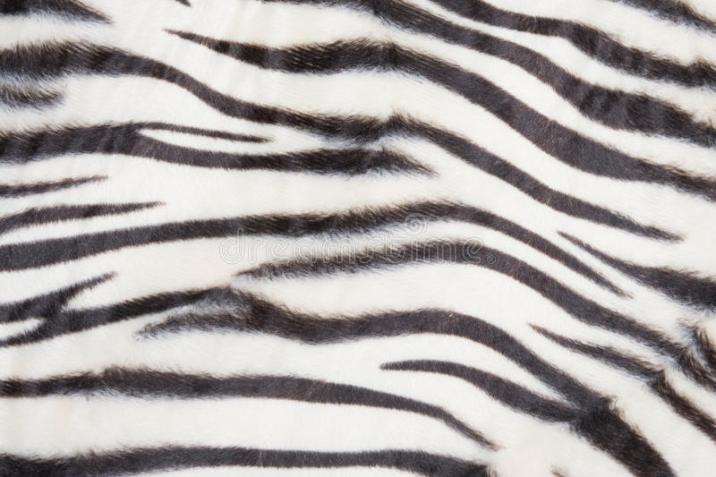 Tiger pattern. Background or texture royalty free stock image