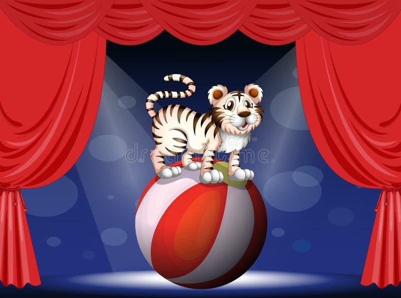 A tiger performing at the circus