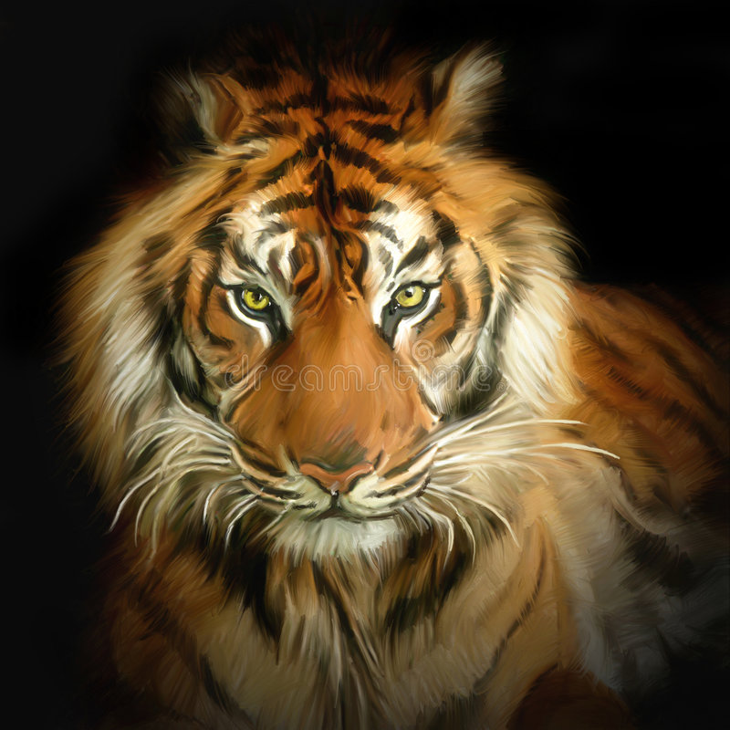 Tiger portrait royalty free illustration