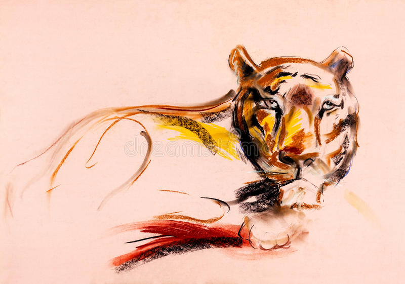 Download Tiger sketch stock illustration. Image of beautiful, black - 26669546
