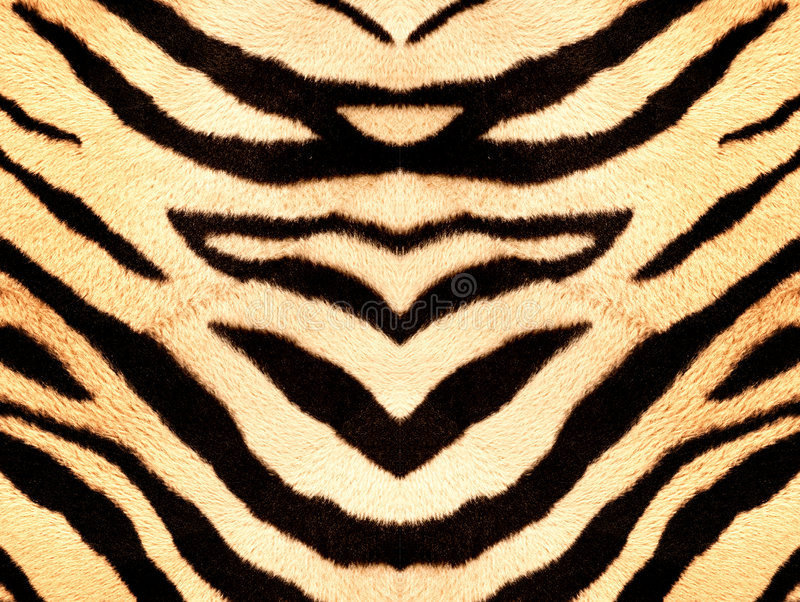 Download Tiger style fabric texture stock image. Image of fluffy - 3410919