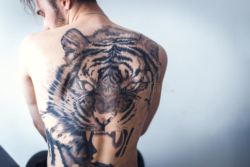 Tiger tattoo art. A man with a tattoo of a tiger on the back. tattoo art stock photos
