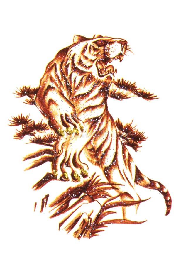 Tiger Tattoo Macro Isolated Royalty Free Stock Image
