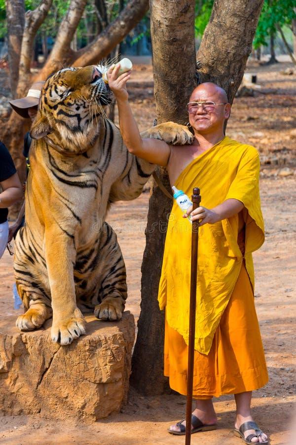 Tiger Temple, Tailandia imagen de archivo