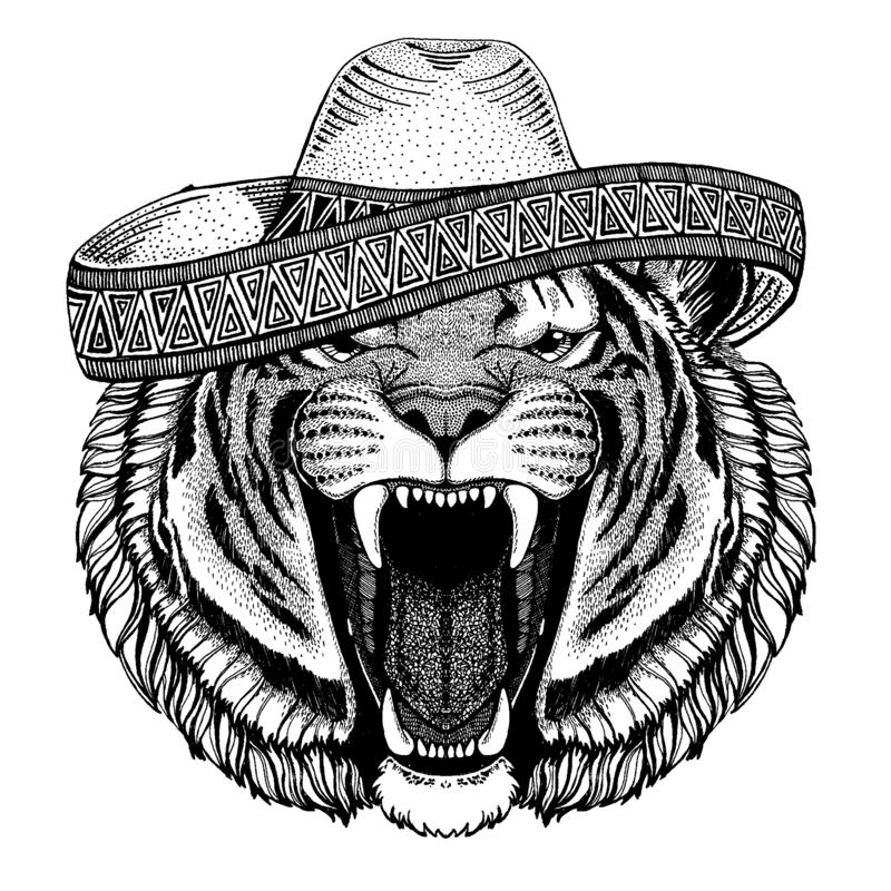 Tiger wearing traditional mexican hat. Classic headdress, fiesta, party. Tiger wearing traditional mexican hat. Classic headdress, fiesta, party royalty free illustration