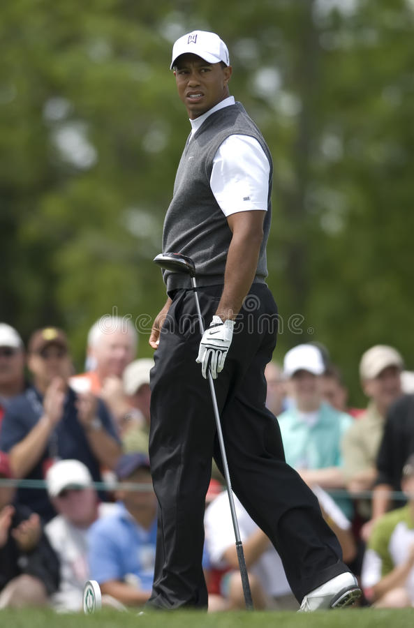Tiger Woods. At the 2009 Memorial royalty free stock image