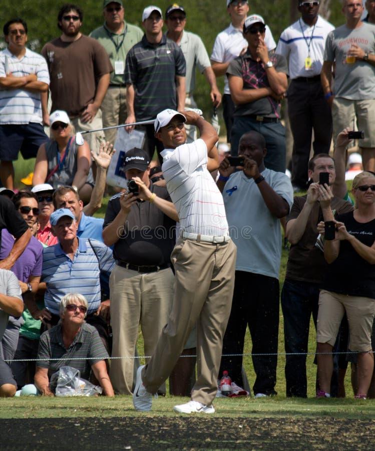 Tiger Woods lizenzfreie stockbilder
