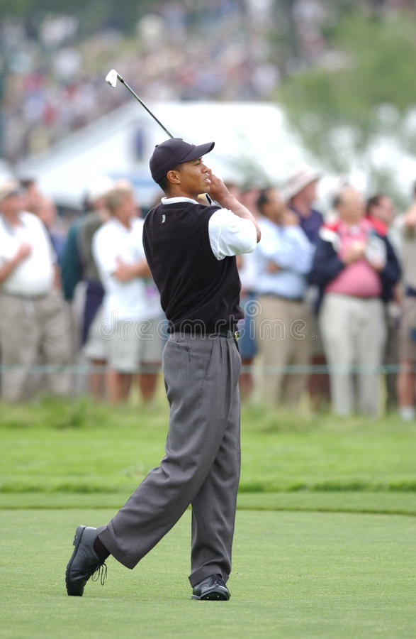 Tiger Woods arkivfoto