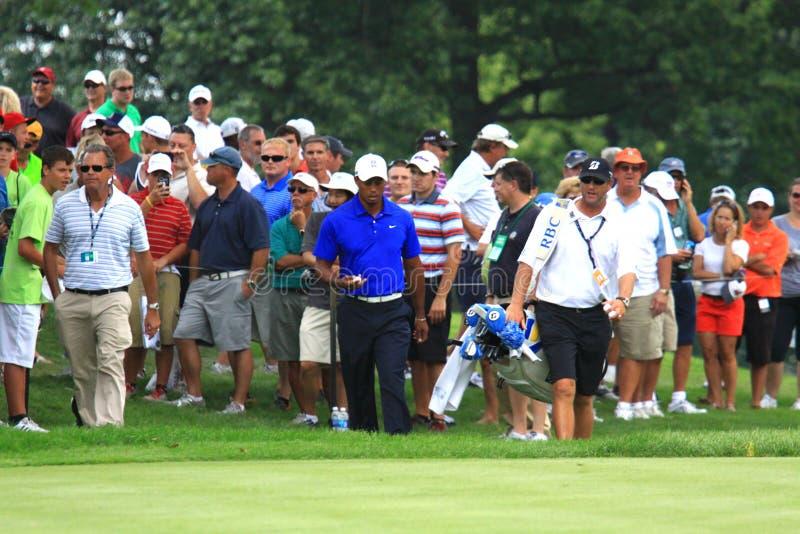 Tiger Woods amerykanina golfista zdjęcie stock