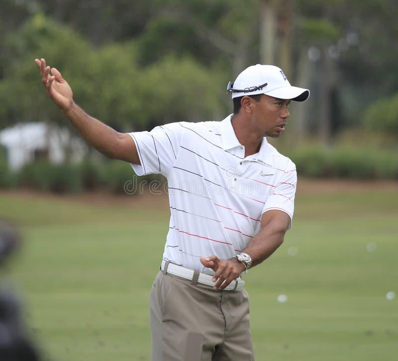 Tiger Woods au championnat 2012 de joueurs photos stock