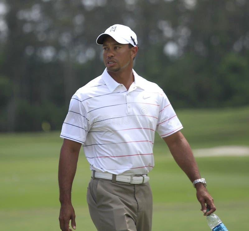 Tiger Woods au championnat 2012 de joueurs photo libre de droits