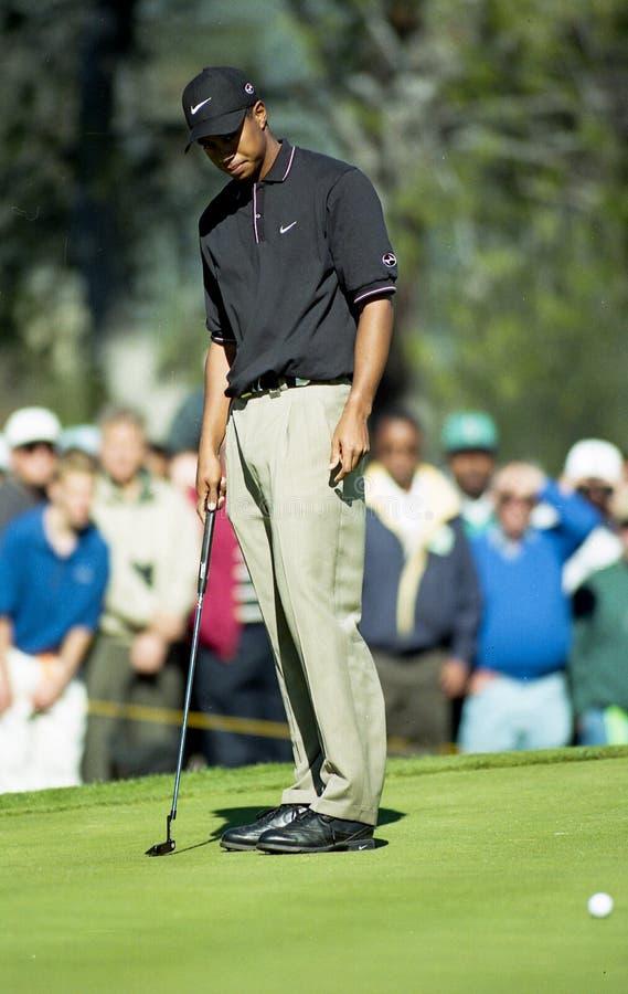 Tiger Woods brakuje uderzenie zakańczające zdjęcie stock