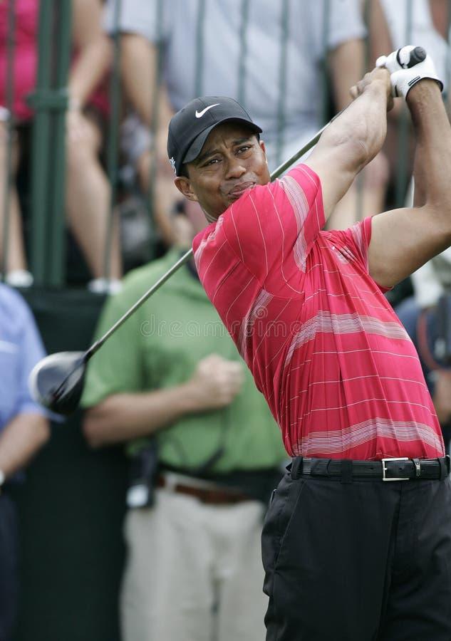 Tiger Woods chez Doral à Miami image libre de droits