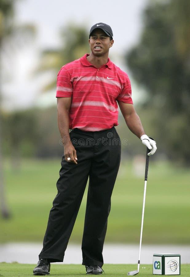 Tiger Woods chez Doral à Miami images libres de droits