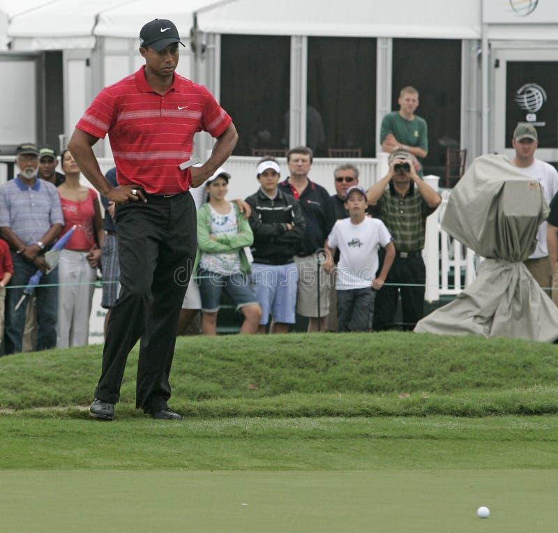 Tiger Woods chez Doral à Miami photographie stock