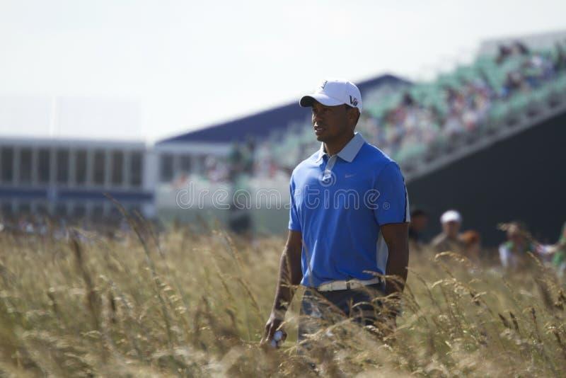 Tiger Woods Chodzi trójnik na 18 zdjęcia stock
